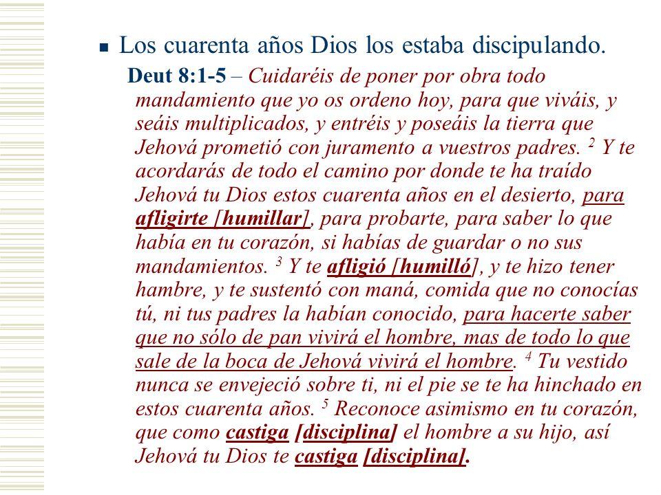 Los cuarenta años Dios los estaba discipulando. Deut 8:1-5 – Cuidaréis de poner por obra todo mandamiento que yo os ordeno hoy, para que viváis, y seá