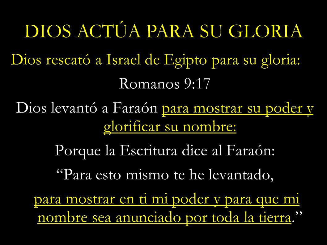 Dios rescató a Israel de Egipto para su gloria: Romanos 9:17 Dios levantó a Faraón para mostrar su poder y glorificar su nombre: Porque la Escritura d