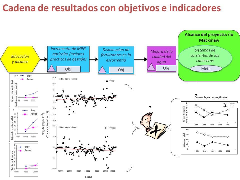 s Cadena de resultados con objetivos e indicadores Educación y alcance Incremento de MPG agrícolas (mejores practicas de gestión) Incremento de MPG ag