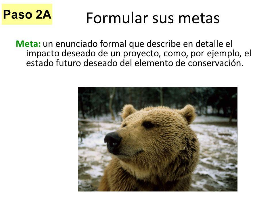 Meta: un enunciado formal que describe en detalle el impacto deseado de un proyecto, como, por ejemplo, el estado futuro deseado del elemento de conse