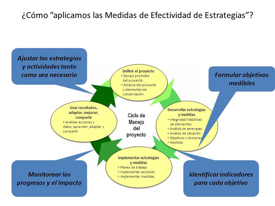 ¿Cómo aplicamos las Medidas de Efectividad de Estrategias? Project Mgmt Cycle Identificar indicadores para cada objetivo Monitorear los progresos y el