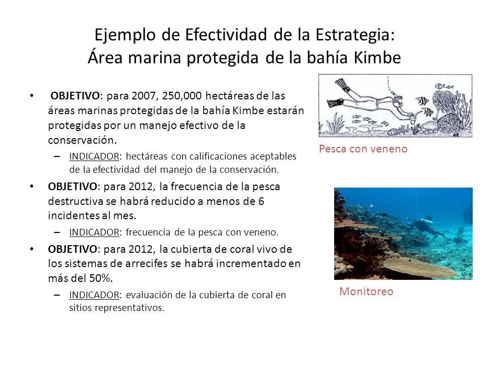 Ejemplo de Efectividad de la Estrategia: Área marina protegida de la bahía Kimbe OBJETIVO: para 2007, 250,000 hectáreas de las áreas marinas protegida