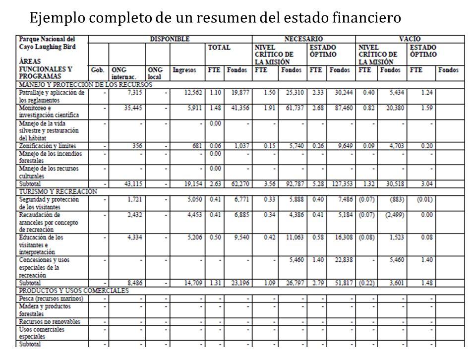 Ejemplo completo de un resumen del estado financiero