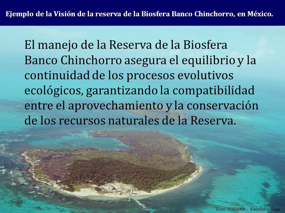 El manejo de la Reserva de la Biosfera Banco Chinchorro asegura el equilibrio y la continuidad de los procesos evolutivos ecológicos, garantizando la