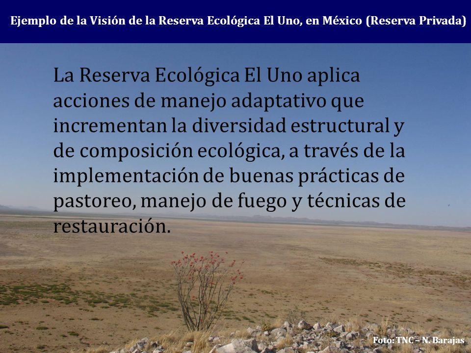 Ejemplo de la Visión de la Reserva Ecológica El Uno, en México (Reserva Privada) La Reserva Ecológica El Uno aplica acciones de manejo adaptativo que