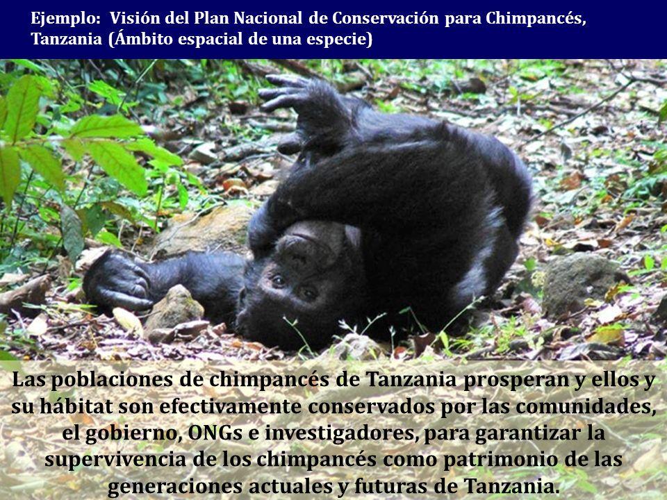 Ejemplo: Visión del Plan Nacional de Conservación para Chimpancés, Tanzania (Ámbito espacial de una especie) Las poblaciones de chimpancés de Tanzania