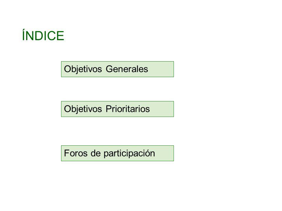 ÍNDICE Objetivos Generales Objetivos Prioritarios Foros de participación