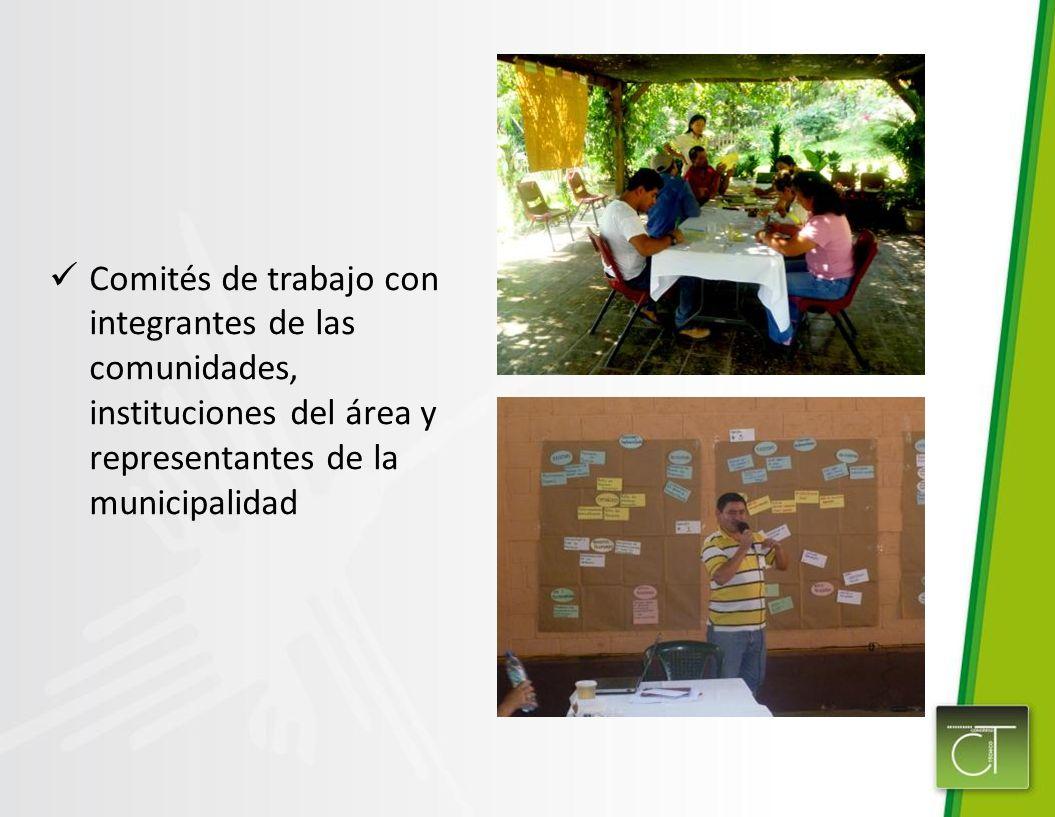 Comités de trabajo con integrantes de las comunidades, instituciones del área y representantes de la municipalidad