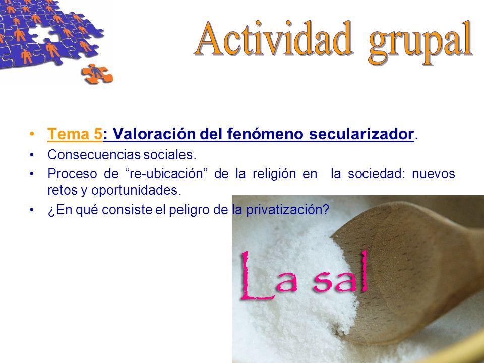 Tema 5: Valoración del fenómeno secularizador. Consecuencias sociales. Proceso de re-ubicación de la religión en la sociedad: nuevos retos y oportunid