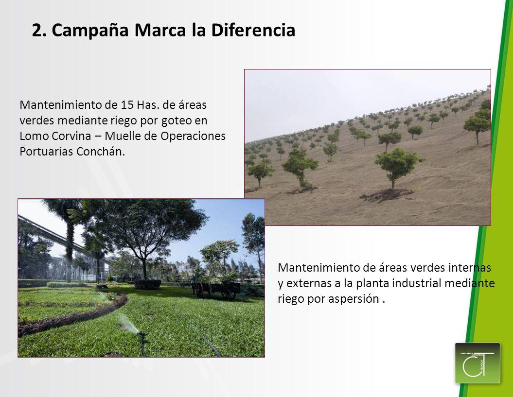 Mantenimiento de 15 Has. de áreas verdes mediante riego por goteo en Lomo Corvina – Muelle de Operaciones Portuarias Conchán. Mantenimiento de áreas v
