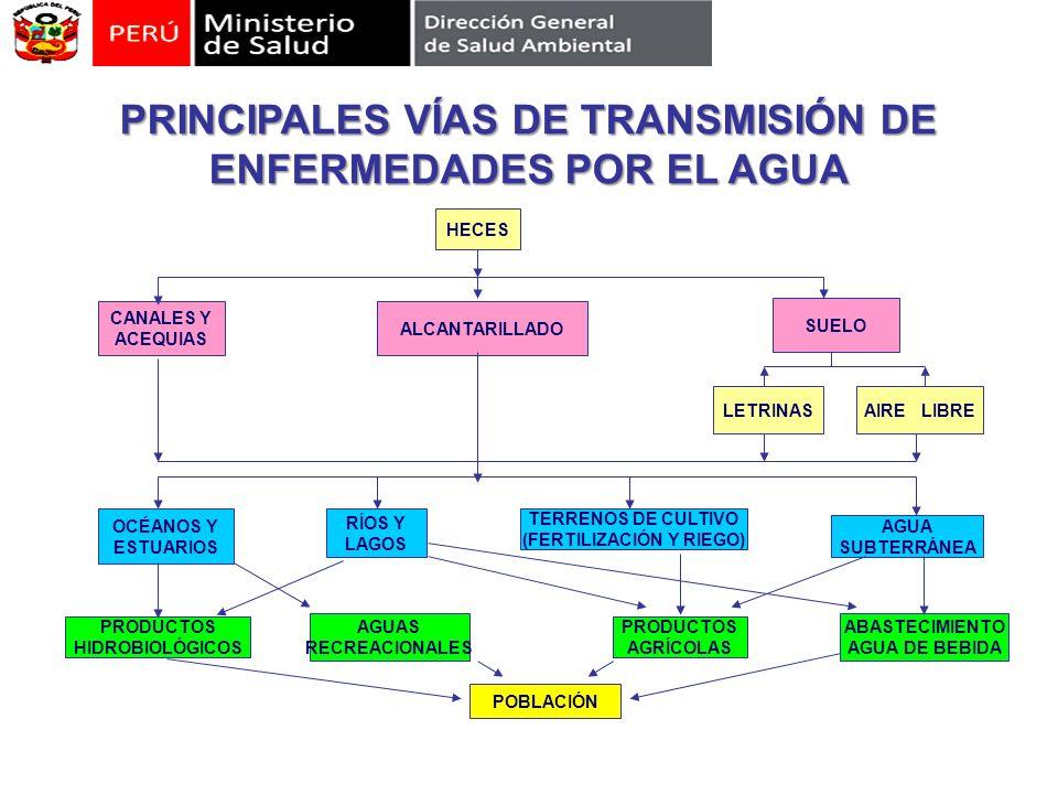 PRINCIPALES VÍAS DE TRANSMISIÓN DE ENFERMEDADES POR EL AGUA PRODUCTOS HIDROBIOLÓGICOS AGUAS RECREACIONALES PRODUCTOS AGRÍCOLAS ABASTECIMIENTO AGUA DE