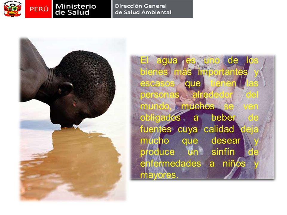 El agua es uno de los bienes más importantes y escasos que tienen las personas alrededor del mundo, muchos se ven obligados a beber de fuentes cuya ca
