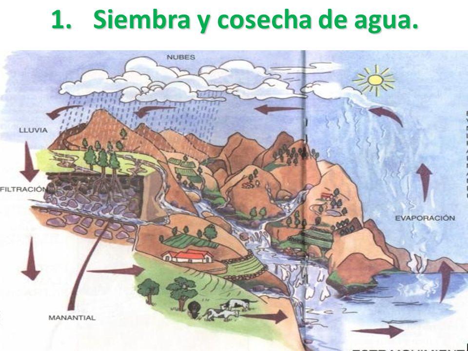 Las Organizaciones Comunitarias de Servicios de Agua y Saneamiento ¿Qué son las OCSAS? Miles de ejemplos en Latinoamérica demuestran que, cuando la so