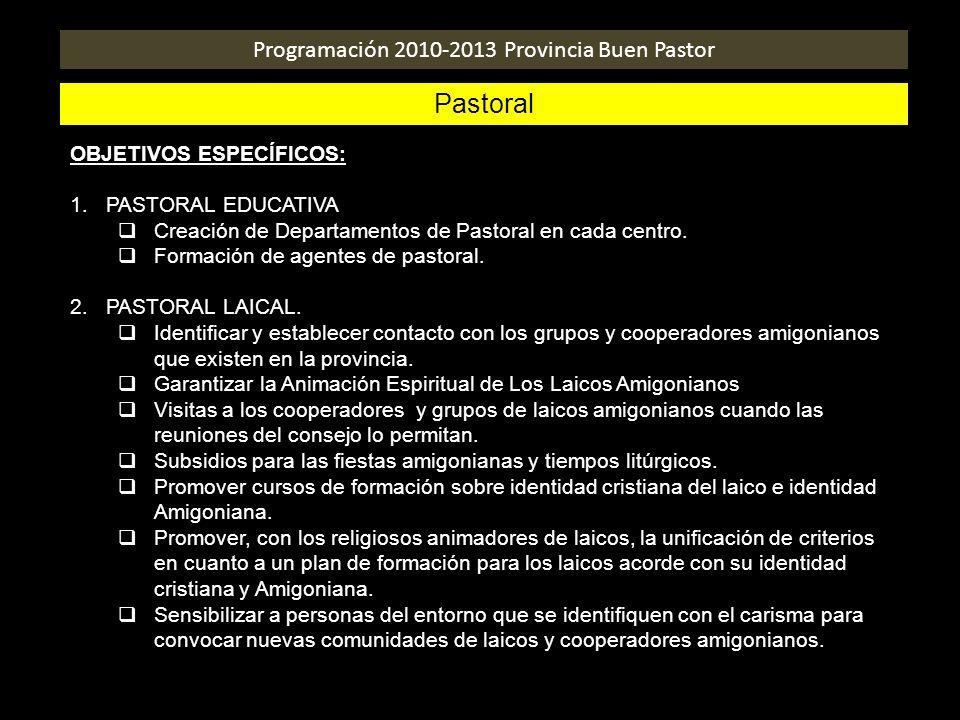 Programación 2010-2013 Provincia Buen Pastor Pastoral OBJETIVOS ESPECÍFICOS: 1.PASTORAL EDUCATIVA Creación de Departamentos de Pastoral en cada centro