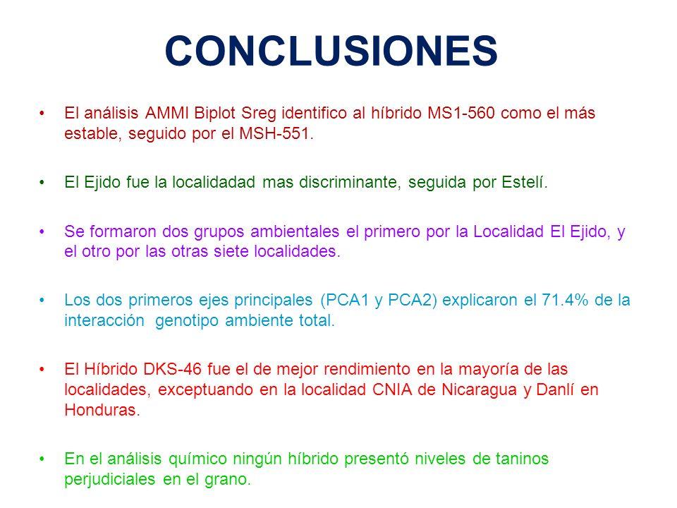 CONCLUSIONES El análisis AMMI Biplot Sreg identifico al híbrido MS1-560 como el más estable, seguido por el MSH-551. El Ejido fue la localidadad mas d