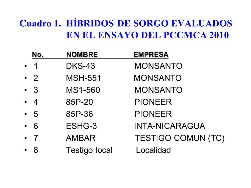 Cuadro 1. HÍBRIDOS DE SORGO EVALUADOS EN EL ENSAYO DEL PCCMCA 2010 No. NOMBRE EMPRESA 1 DKS-43 MONSANTO 2 MSH-551 MONSANTO 3 MS1-560 MONSANTO 4 85P-20