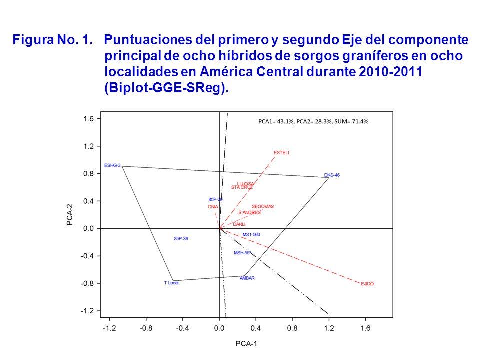 Figura No. 1. Puntuaciones del primero y segundo Eje del componente principal de ocho híbridos de sorgos graníferos en ocho localidades en América Cen
