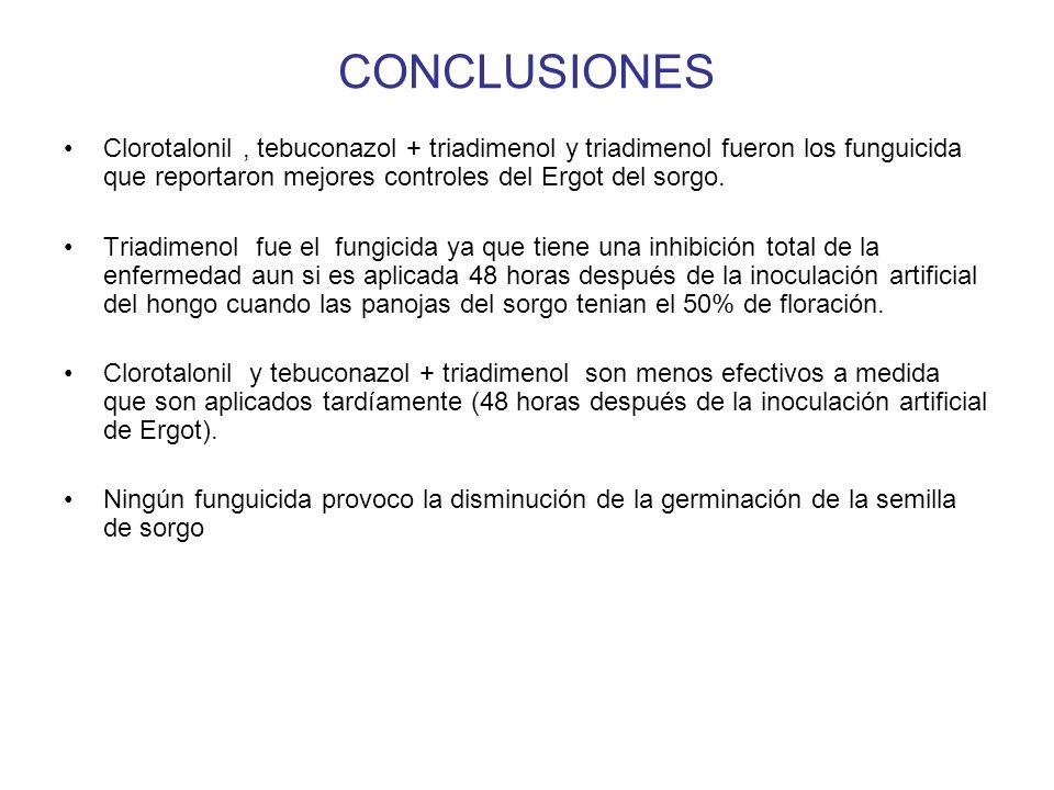 CONCLUSIONES Clorotalonil, tebuconazol + triadimenol y triadimenol fueron los funguicida que reportaron mejores controles del Ergot del sorgo.
