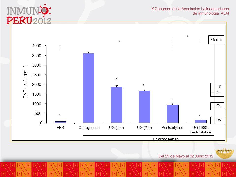 0 500 1000 1500 2000 2500 3000 3500 4000 PBSCarrageenanUG (100)UG (250)PentoxifyllineUG (100) - Pentoxifylline +carrageenan TNF - ( pg/ml ) * * * * *