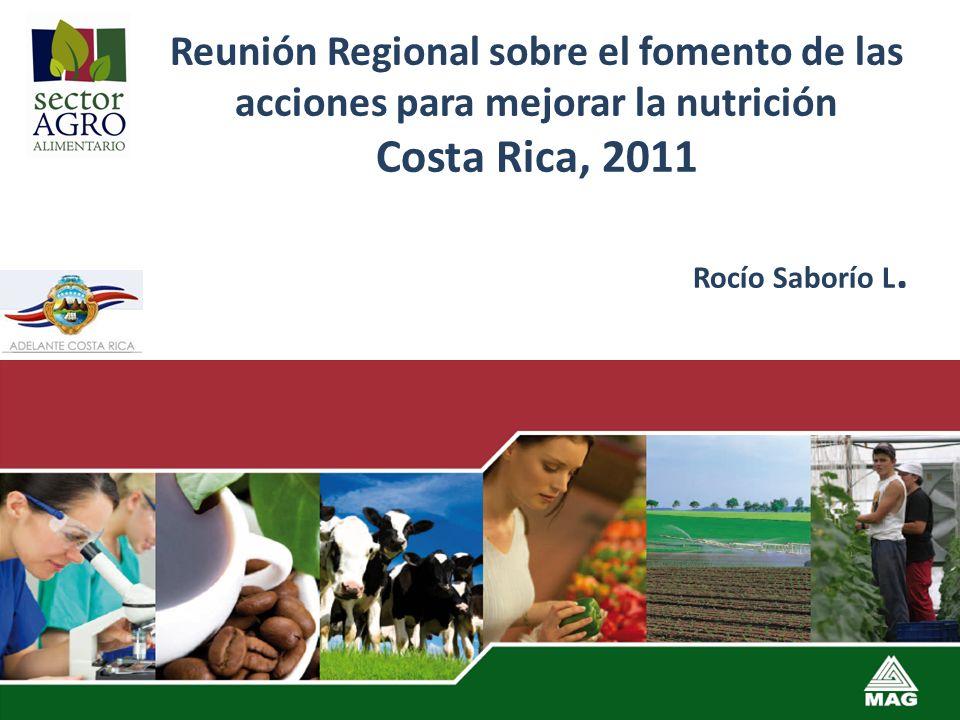 Reunión Regional sobre el fomento de las acciones para mejorar la nutrición Costa Rica, 2011 Rocío Saborío L.