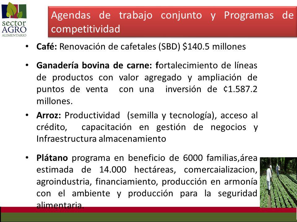 Café: Renovación de cafetales (SBD) $140.5 millones Ganadería bovina de carne: fortalecimiento de líneas de productos con valor agregado y ampliación