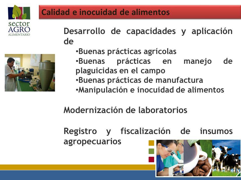 Calidad e inocuidad de alimentos Desarrollo de capacidades y aplicación de Buenas prácticas agrícolas Buenas prácticas en manejo de plaguicidas en el