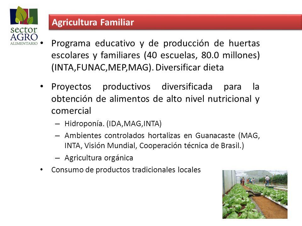 Agricultura Familiar Programa educativo y de producción de huertas escolares y familiares (40 escuelas, 80.0 millones) (INTA,FUNAC,MEP,MAG). Diversifi