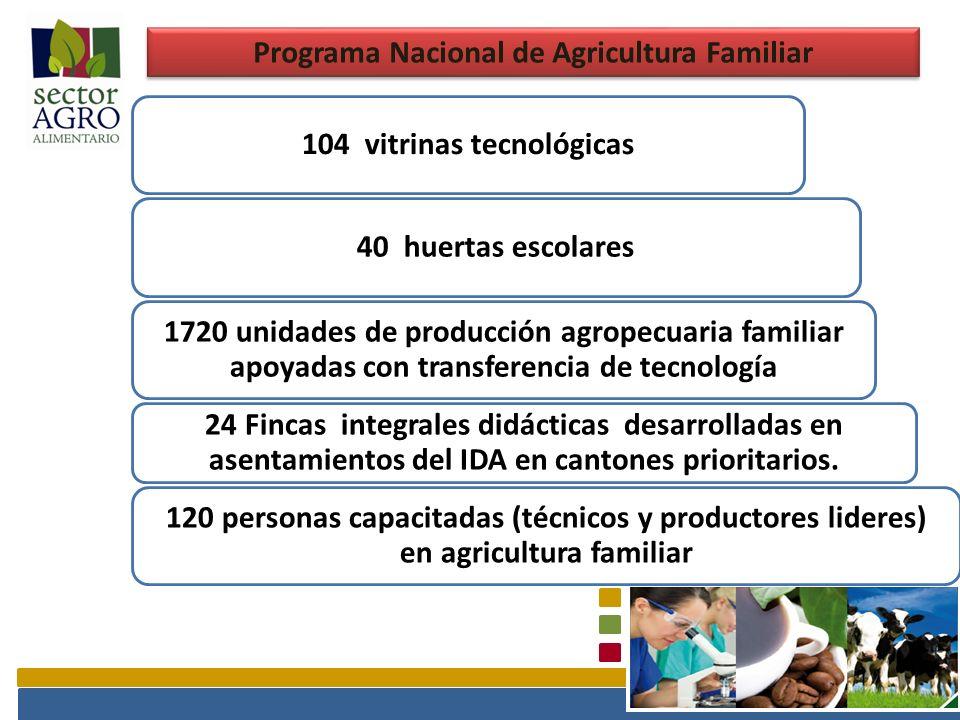 Programa Nacional de Agricultura Familiar 104 vitrinas tecnológicas40 huertas escolares 1720 unidades de producción agropecuaria familiar apoyadas con