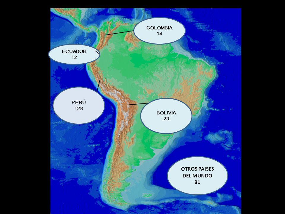 PERÚ 128 COLOMBIA 14 ECUADOR 12 BOLIVIA 23 OTROS PAISES DEL MUNDO 81