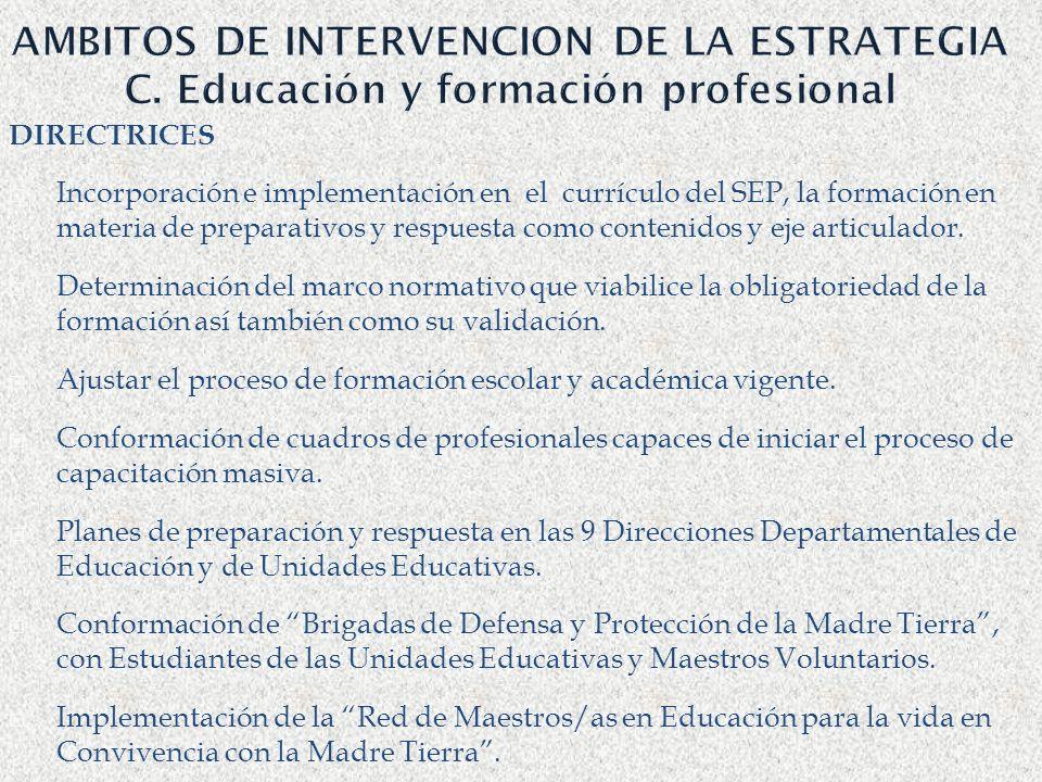 AMBITOS DE INTERVENCION DE LA ESTRATEGIA C. Educación y formación profesional DIRECTRICES Incorporación e implementación en el currículo del SEP, la f