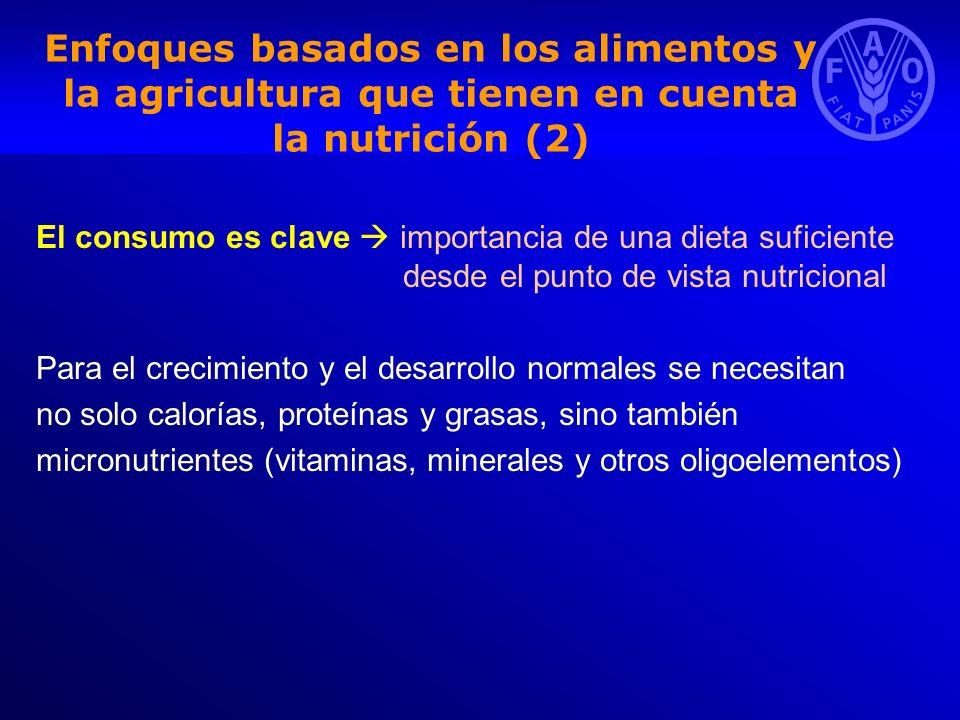 Enfoques basados en los alimentos y la agricultura que tienen en cuenta la nutrición (2) El consumo es clave importancia de una dieta suficiente desde