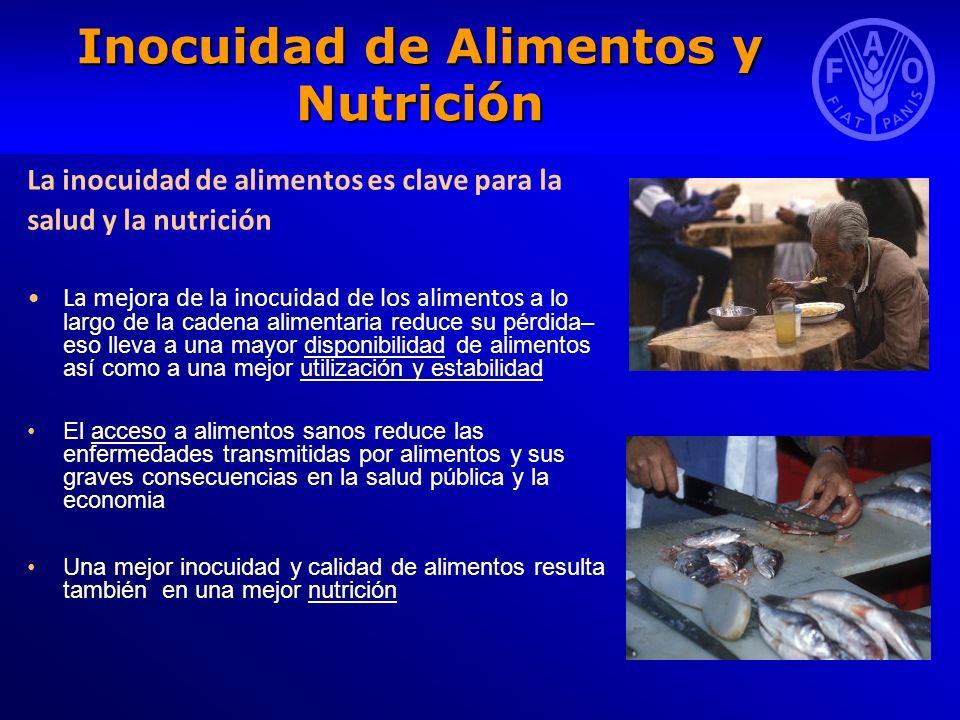 Inocuidad de Alimentos y Nutrición La inocuidad de alimentos es clave para la salud y la nutrición La mejora de la inocuidad de los alimentos a lo lar