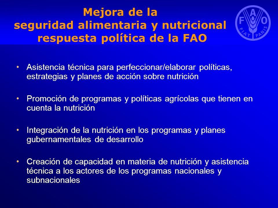 Mejora de la seguridad alimentaria y nutricional respuesta política de la FAO Asistencia técnica para perfeccionar/elaborar políticas, estrategias y p