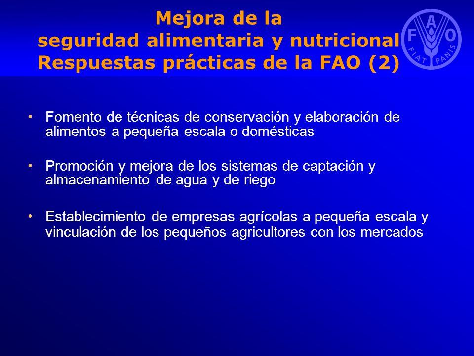 Mejora de la seguridad alimentaria y nutricional Respuestas prácticas de la FAO (2) Fomento de técnicas de conservación y elaboración de alimentos a p
