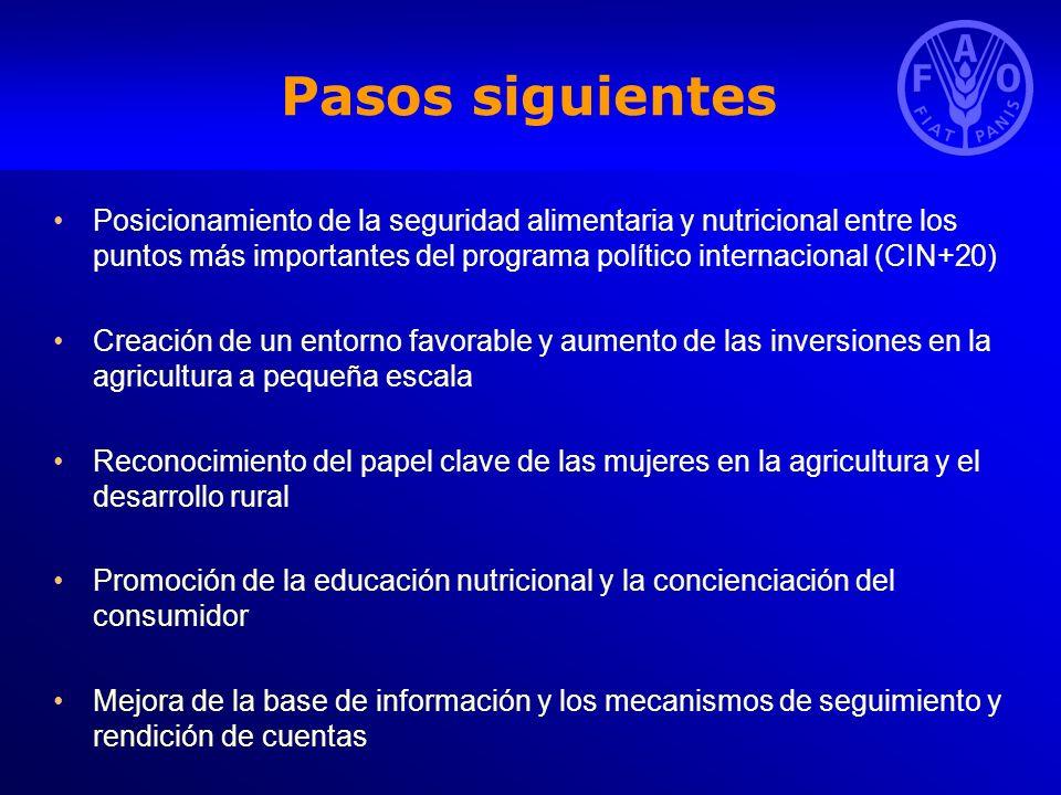 Pasos siguientes Posicionamiento de la seguridad alimentaria y nutricional entre los puntos más importantes del programa político internacional (CIN+2