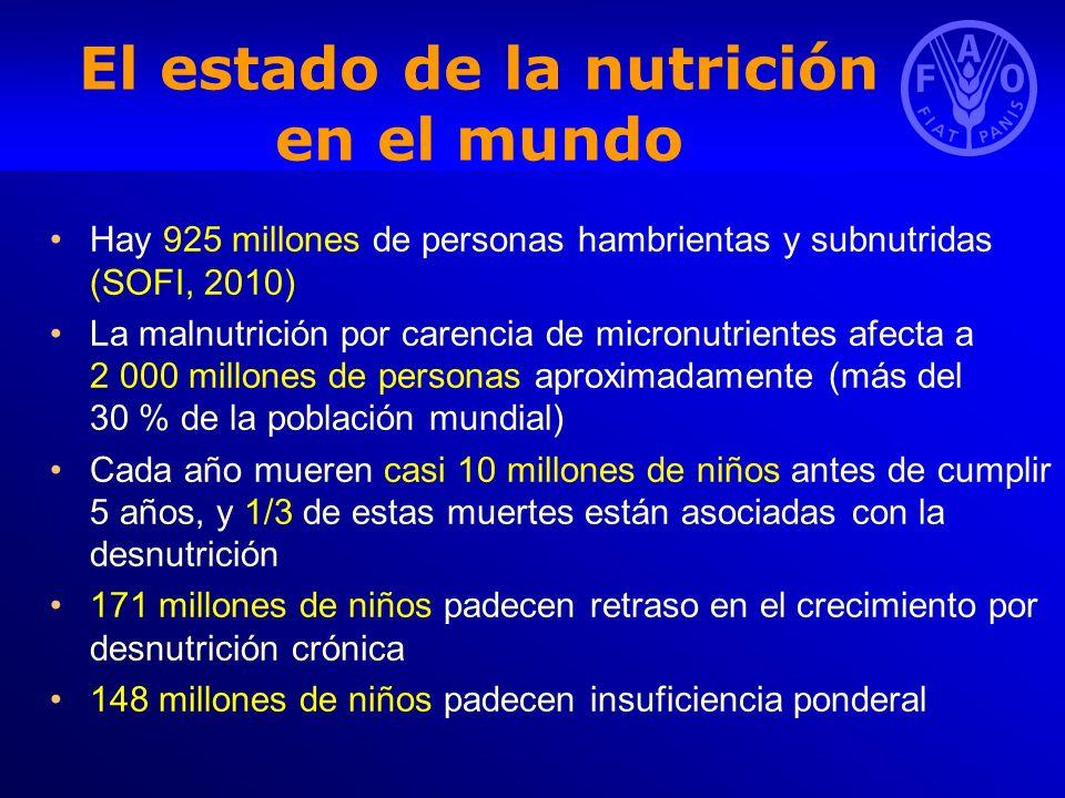 El estado de la nutrición en el mundo Hay 925 millones de personas hambrientas y subnutridas (SOFI, 2010) La malnutrición por carencia de micronutrien