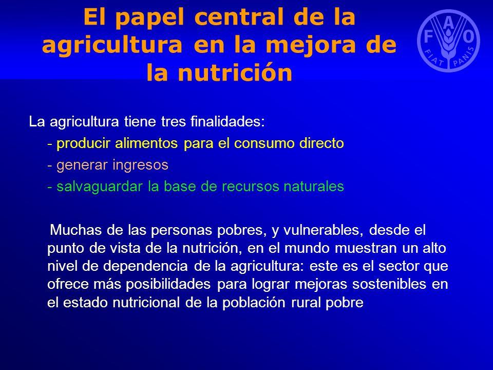 El papel central de la agricultura en la mejora de la nutrición La agricultura tiene tres finalidades: - producir alimentos para el consumo directo -