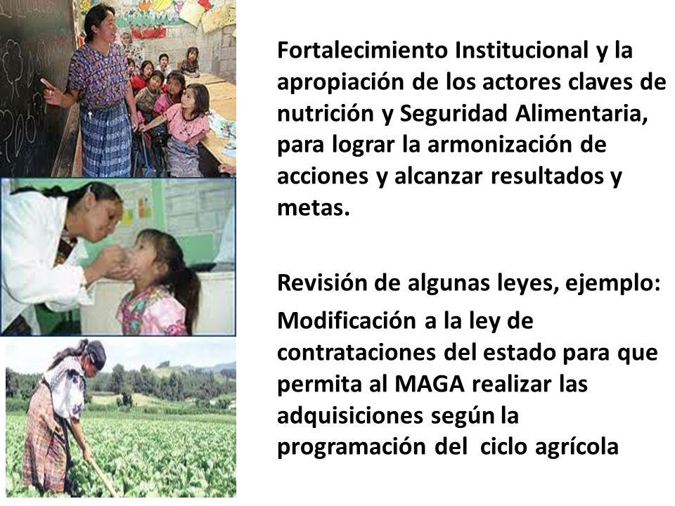 Fortalecimiento Institucional y la apropiación de los actores claves de nutrición y Seguridad Alimentaria, para lograr la armonización de acciones y a