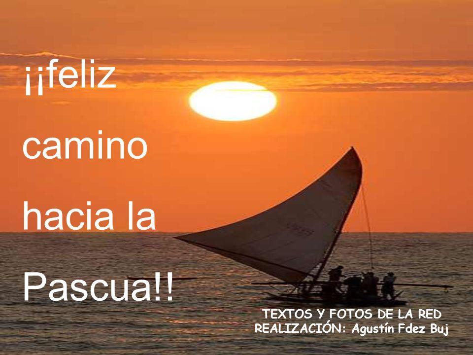 ¡¡feliz camino hacia la Pascua!! TEXTOS Y FOTOS DE LA RED REALIZACIÓN: Agustín Fdez Buj