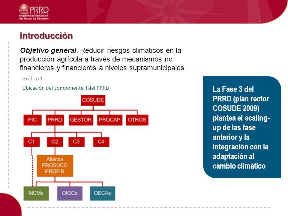 Introducción Objetivo general. Reducir riesgos climáticos en la producción agrícola a través de mecanismos no financieros y financieros a niveles supr