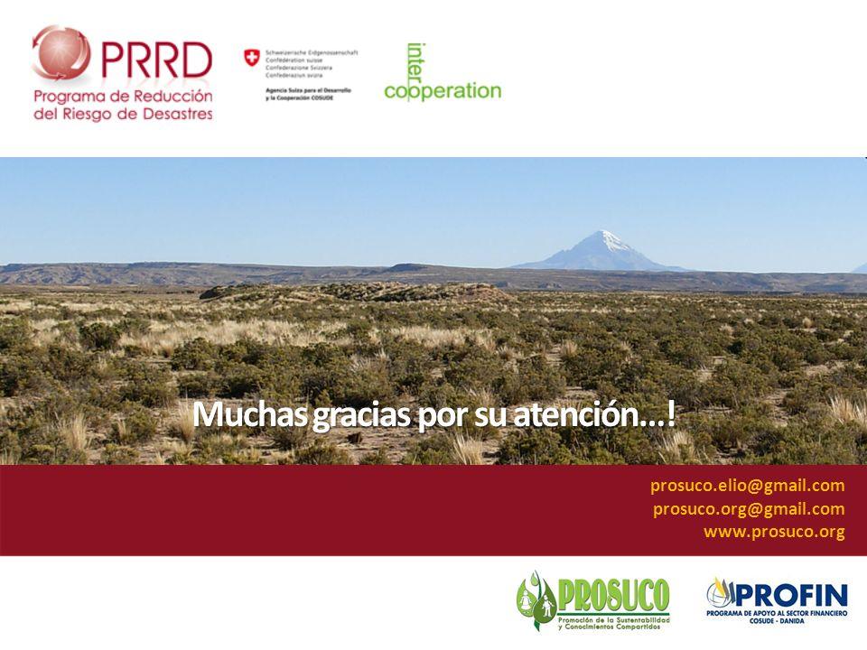 Muchas gracias por su atención…! prosuco.elio@gmail.com prosuco.org@gmail.com www.prosuco.org