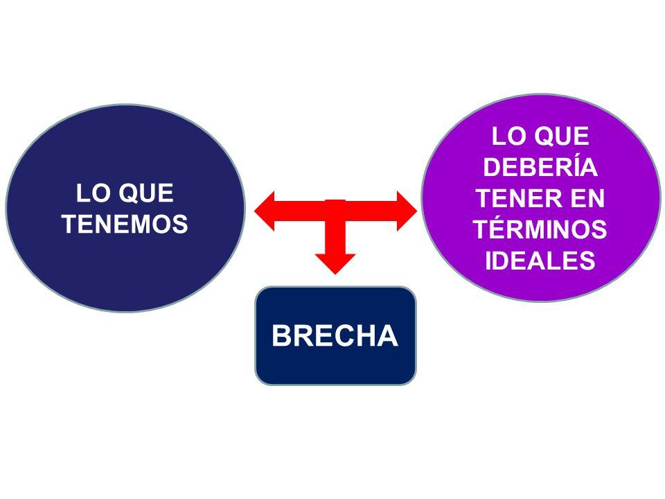 LO QUE DEBERÍA TENER EN TÉRMINOS IDEALES LO QUE TENEMOS BRECHA