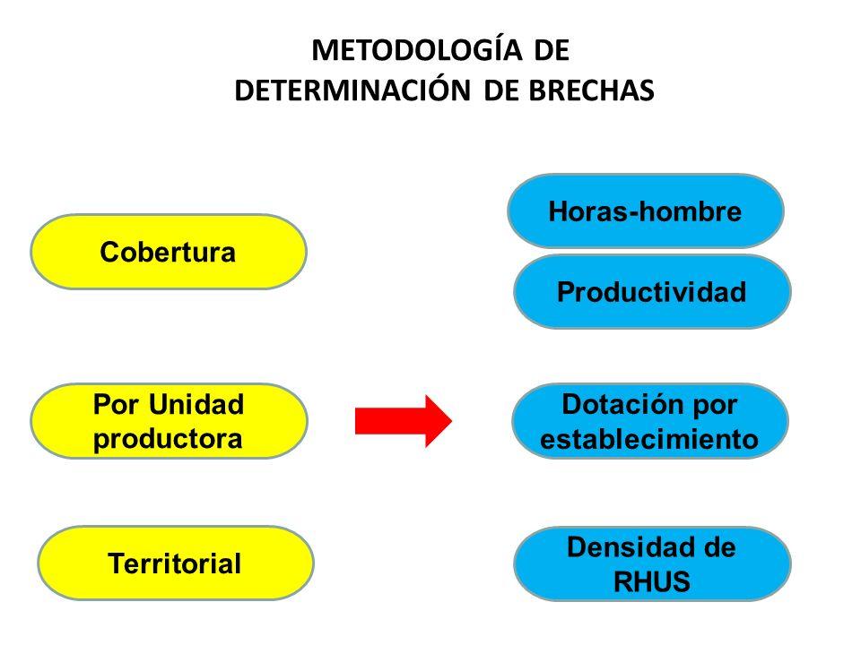 METODOLOGÍA DE DETERMINACIÓN DE BRECHAS Cobertura Por Unidad productora Territorial Horas-hombre Productividad Dotación por establecimiento Densidad d