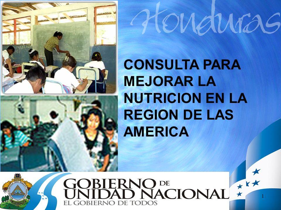 1 CONSULTA PARA MEJORAR LA NUTRICION EN LA REGION DE LAS AMERICA