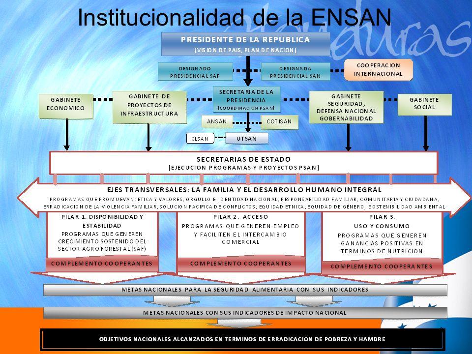 9 Institucionalidad de la ENSAN