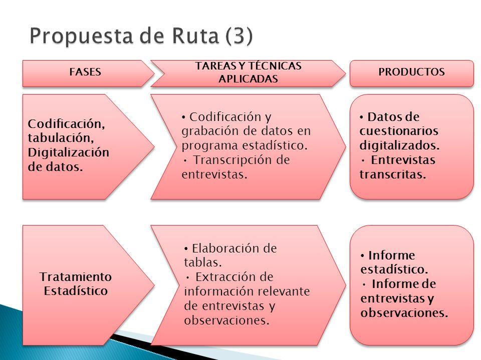 FASES TAREAS Y TÉCNICAS APLICADAS PRODUCTOS Codificación, tabulación, Digitalización de datos.