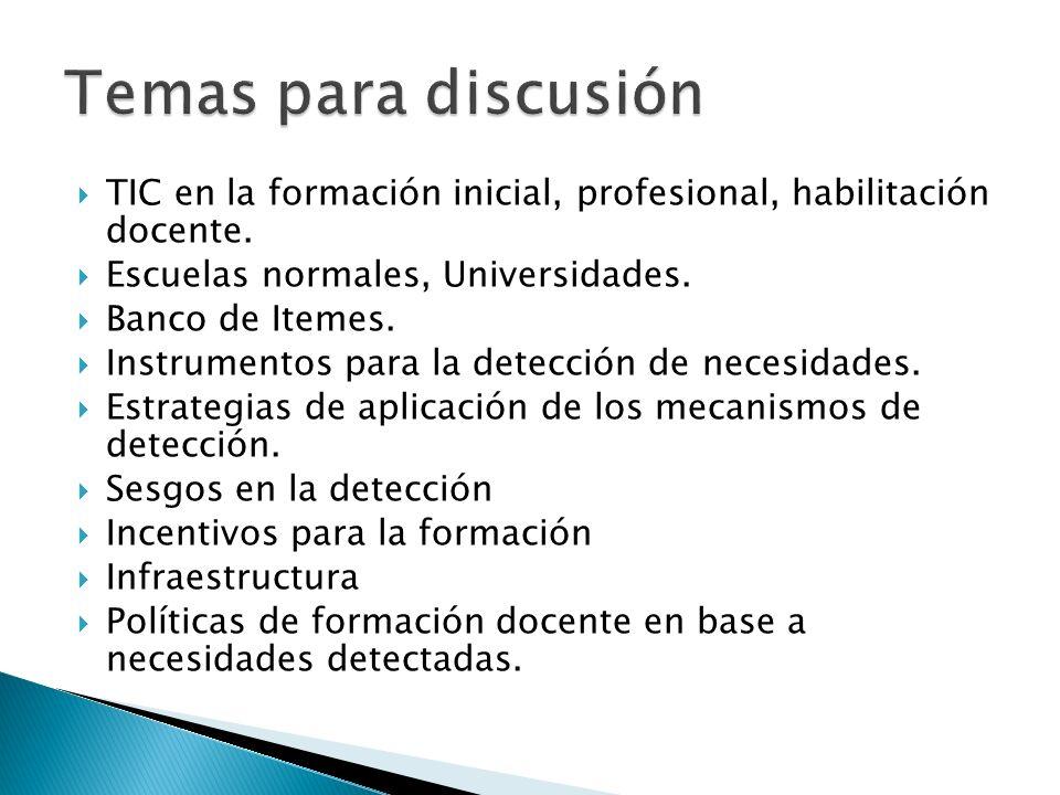 TIC en la formación inicial, profesional, habilitación docente.