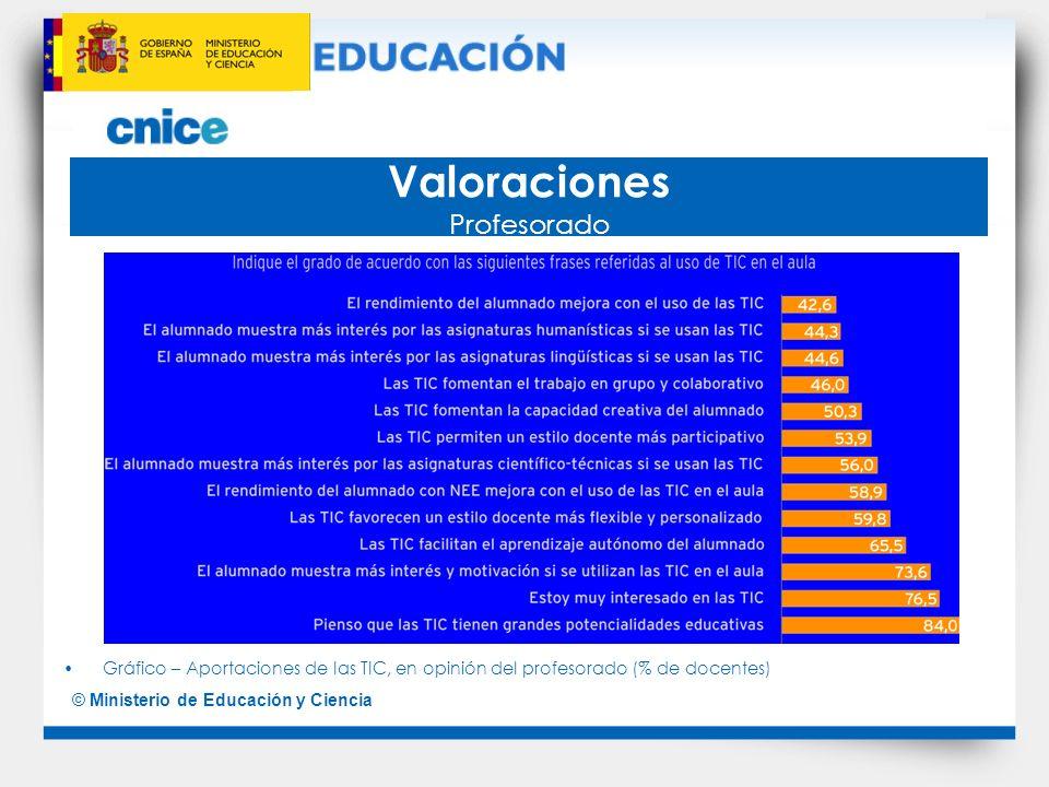 © Ministerio de Educación y Ciencia Agentes formadores