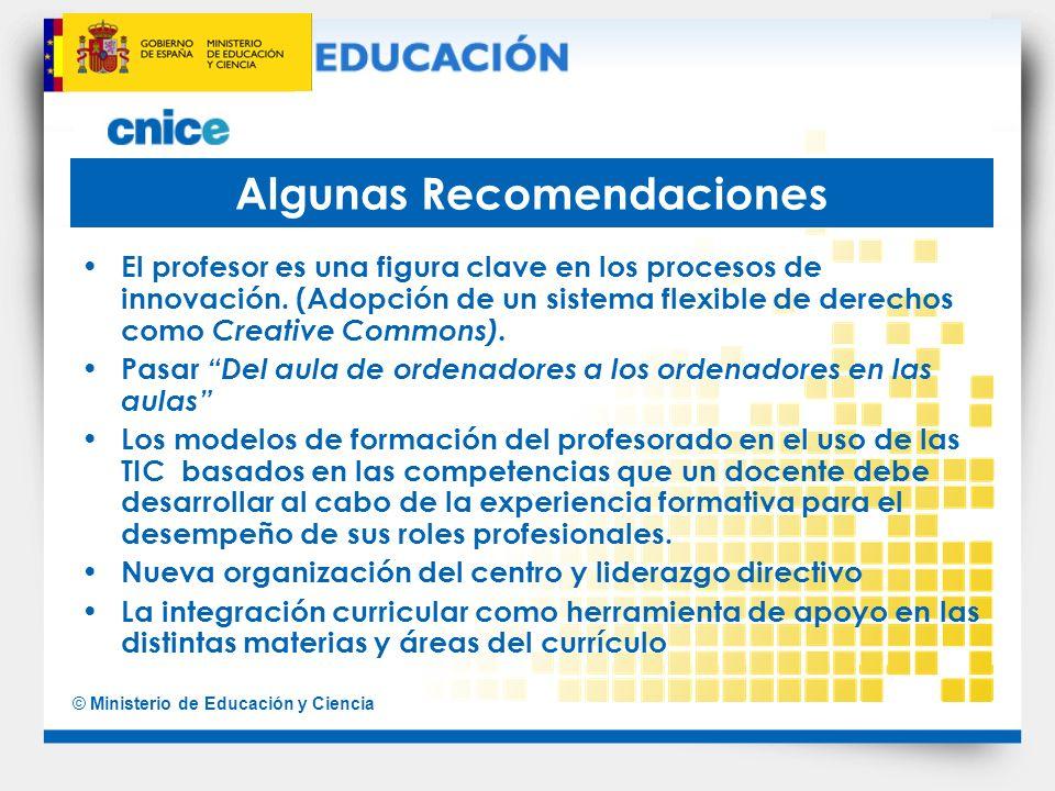 © Ministerio de Educación y Ciencia Algunas Recomendaciones El profesor es una figura clave en los procesos de innovación. (Adopción de un sistema fle