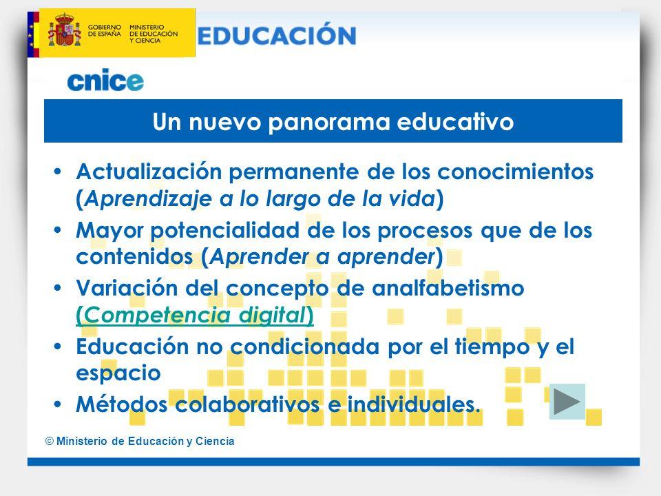 © Ministerio de Educación y Ciencia Un nuevo panorama educativo Actualización permanente de los conocimientos ( Aprendizaje a lo largo de la vida ) Ma